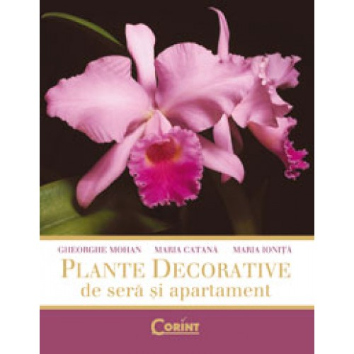 Plantedecorative.jpg
