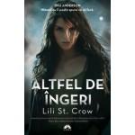 Altfel de Ingeri (Altfel de Ingeri, vol. 1)