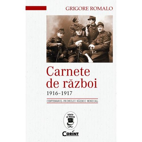 Carnete de război 1916-1917