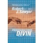Programatorul divin