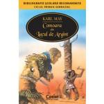 COMOARA DIN LACUL DE ARGINT (Bibliografie scolara)
