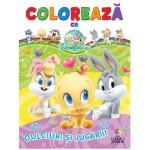 Colorează cu Baby Looney Tunes. Dulciuri şi jucării!