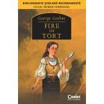 FIRE DE TORT (Bibliografie scolara)